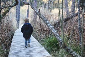 Balade de l'étang noir passerelle en bois à Seignosse dans les Landes