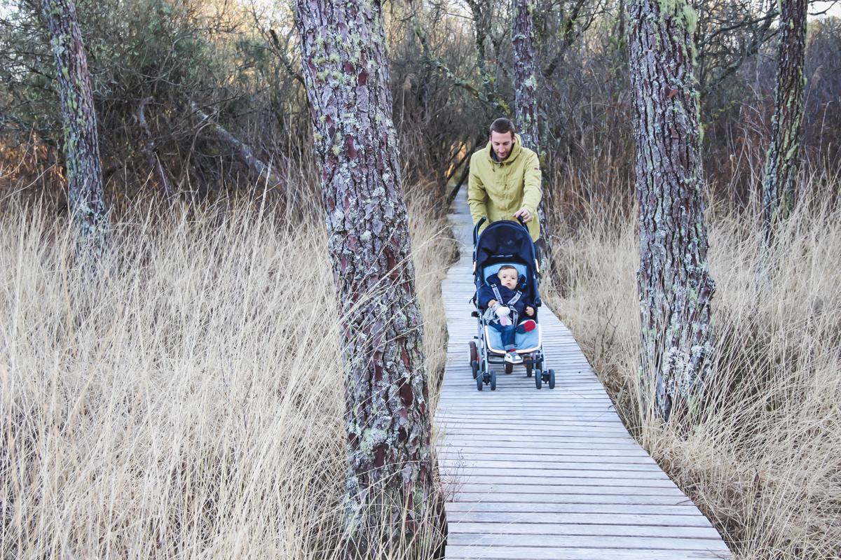 Réserve Naturelle de l'Etang Noir à Seignosse dans les Landes avec passerelle en bois