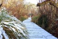 Il neige une fois par an à Seignosse dans les Landes.