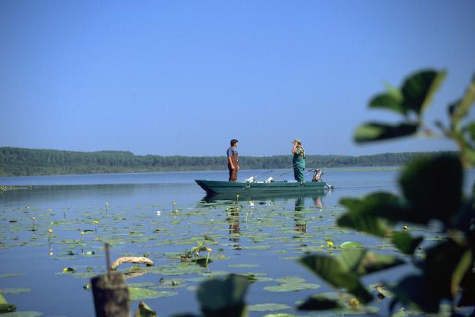 Barque dans un lac des Landes.