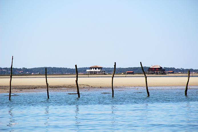 L'île aux oiseaux au Bassin d'Arcachon.