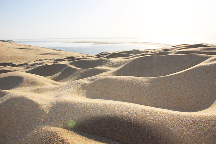 Sable de la Dune du Pyla sur le Bassin d'Arcachon.