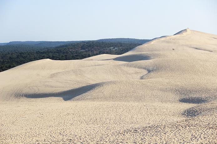 La Dune du Pyla sur le bassin d'Arcachon entre océan et forêt.