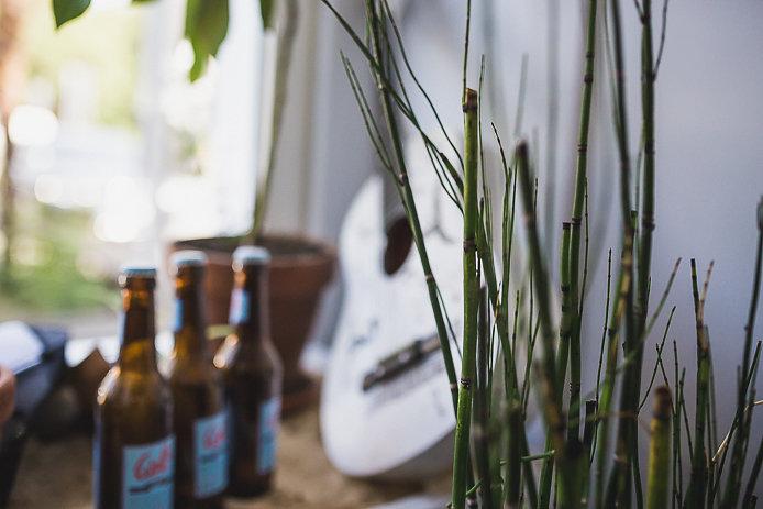 Bières Woll beer en vente chez All Good à Soorts Hossegor.