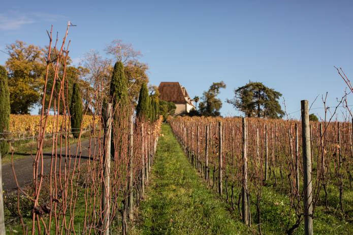 Vignobles Vins Madiran