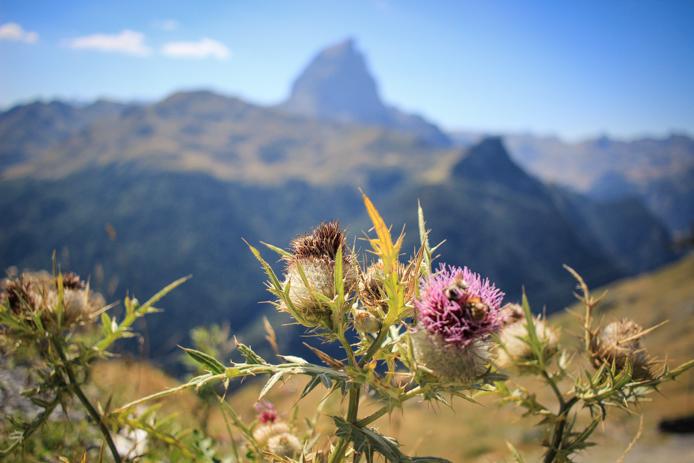 Pic du Midi d'Ossau dans les Pyrénées, le fameux Jean-Pierre.