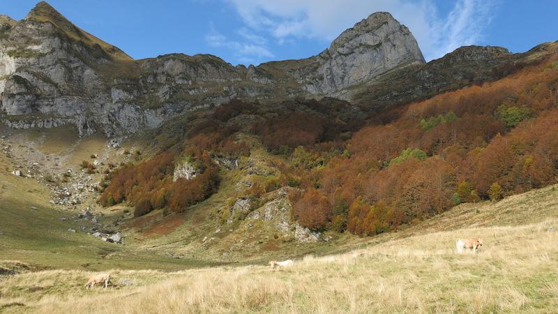 Plateau de Besse