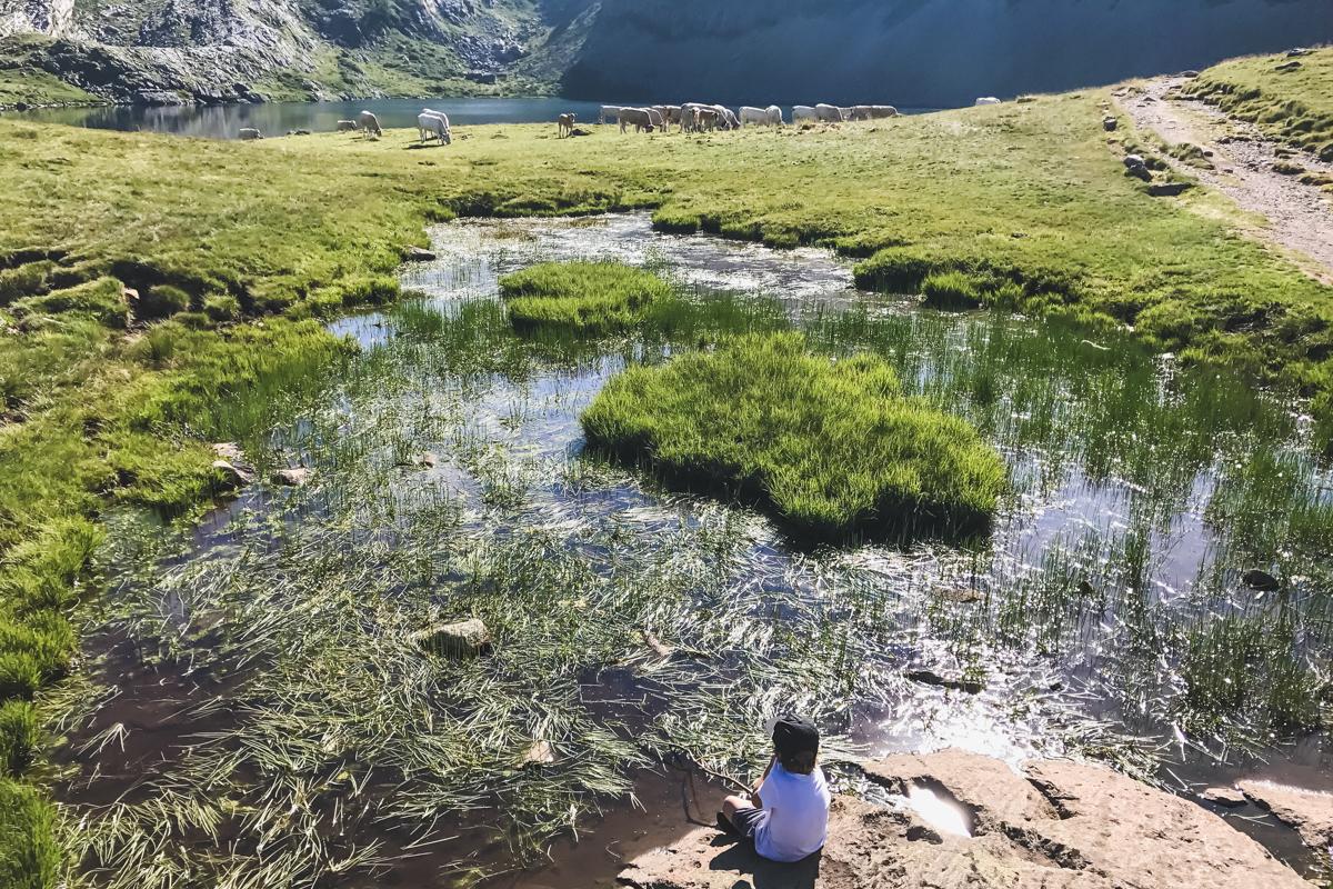 Randonnées des Lacs d'Ayous en vallée d'Ossau dans les Pyrénées ici le Lac Miey