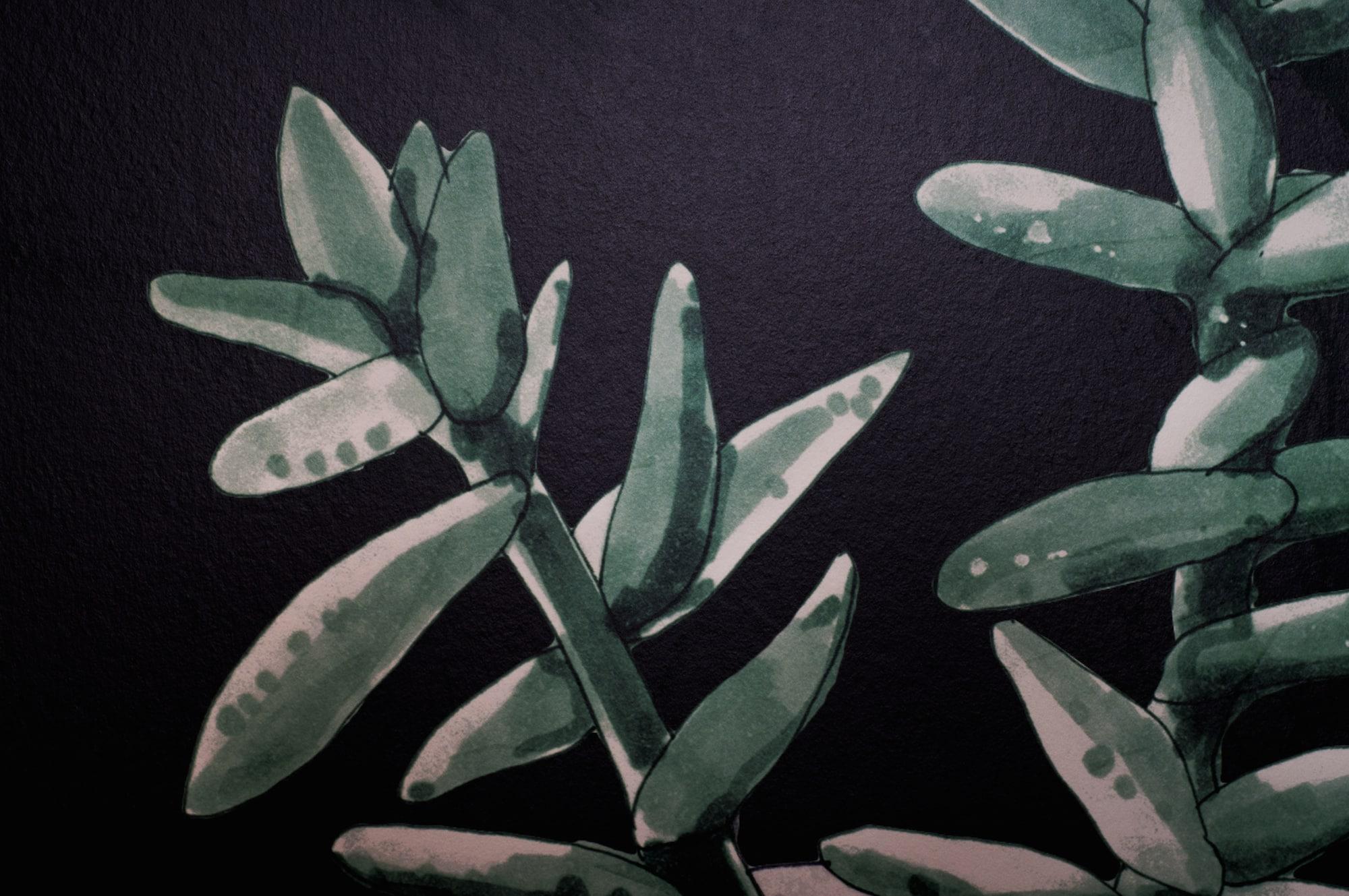Papier peint Hexoa design cactus Capbreton