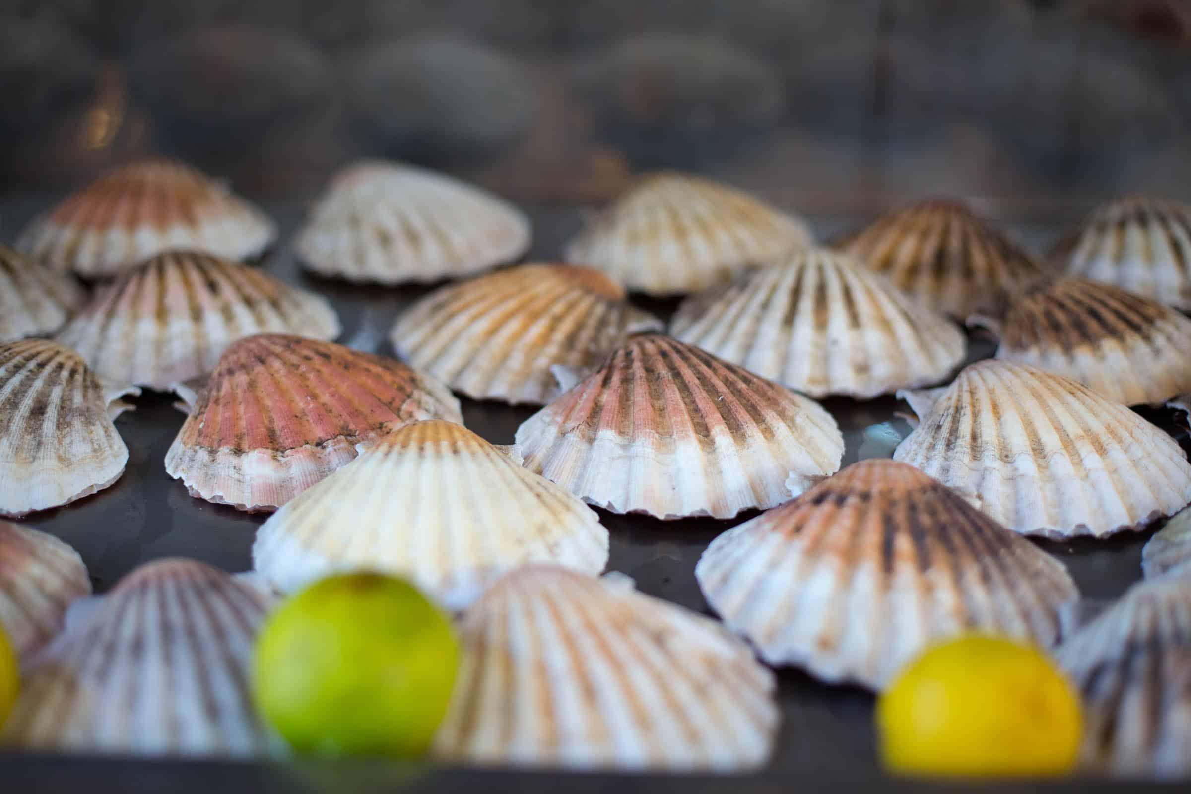fruits de mer crustacés restaurant casamar guethary pays basque landes bar tapas à emporter