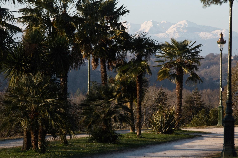 Boulevard des Pyrénées à Pau