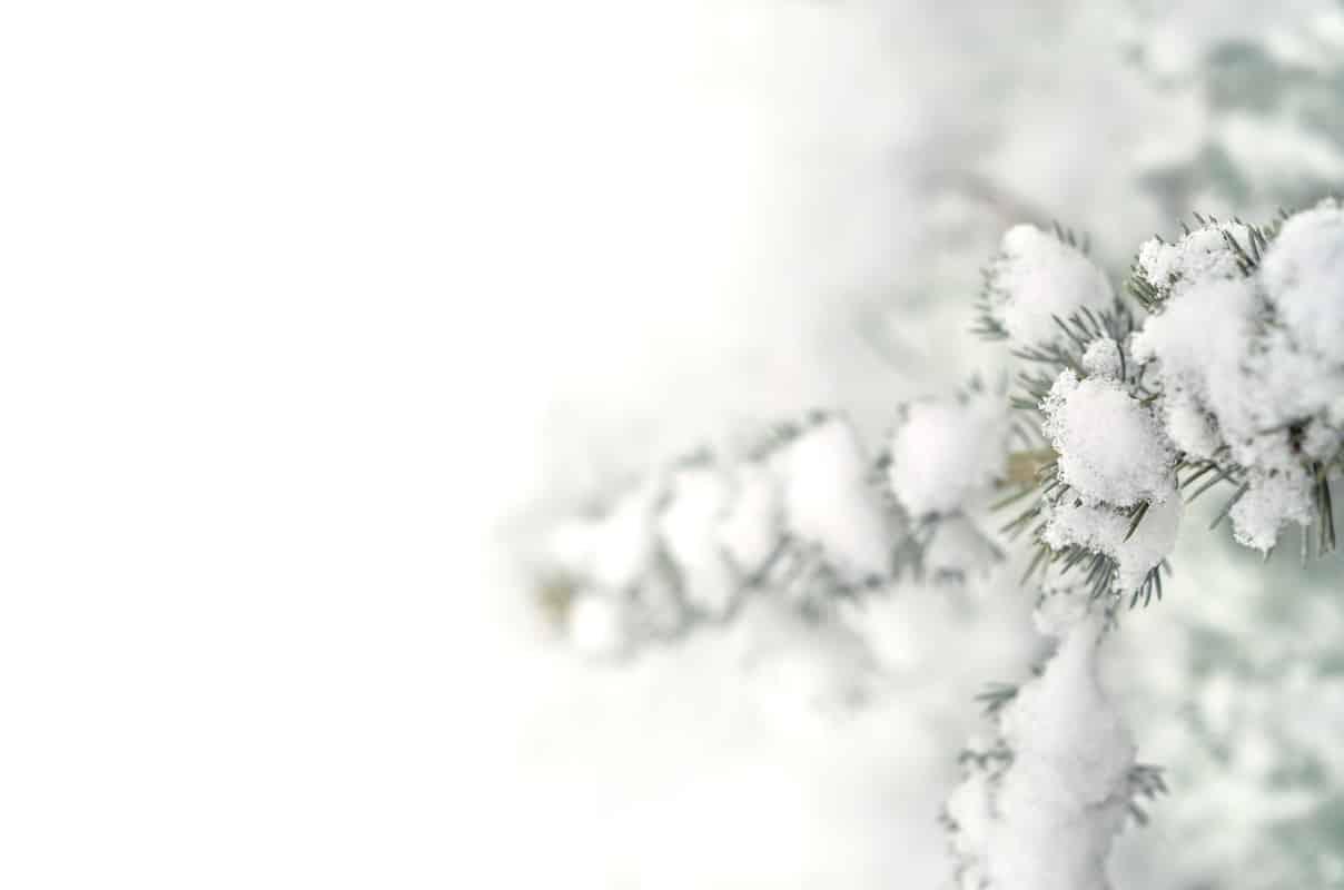 photographie neige par le studio de creation Creative Lune à Pau